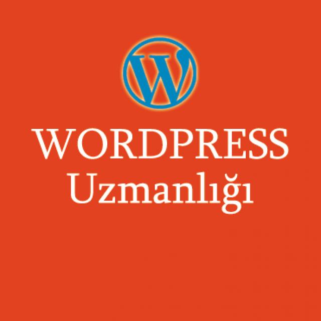 WordPress Eğitimi Ankara | WordPress Kursu Ankara
